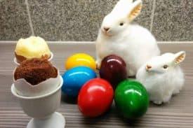 Blogbeitrag Osterei – Kuchen