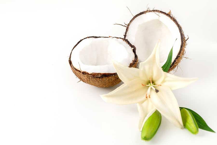 Rezept Wer hat die Kokosnuss geklaut?