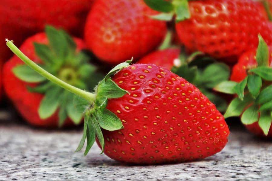 Rezept Erdbeere