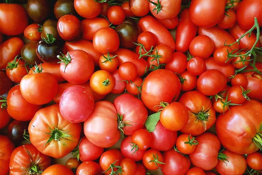 Rezept italienische Tomatensauce