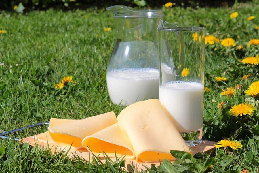 Rezeptwelt Rezept mit Milchprodukt